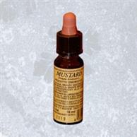 Mustard - 10 ml