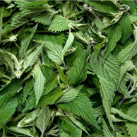 Ortica foglie - prezzo per 100 g